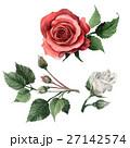 水彩画 イラスト 挿絵のイラスト 27142574