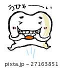 歯 27163851