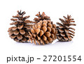 Pine cones isolated on white background 27201554