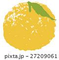 ゆず 柚子 水彩 イラスト 手描き 27209061