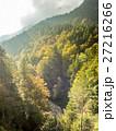 バイエルン バイエルン州 森林の写真 27216266