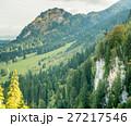 バイエルン バイエルン州 森林の写真 27217546