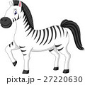 illustration of cute zebra cartoon 27220630
