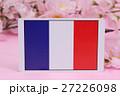 国旗 春 桜 27226098
