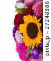 autumn flowers mix 27248386
