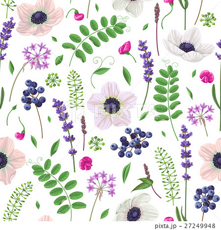 Seamless pattern with flowers, leaves and berries.のイラスト素材 [27249948] - PIXTA