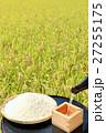秋の田んぼと新米と日本酒 27255175