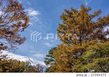 富士山をバックに紅葉と空 27264375