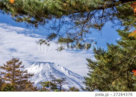 松の木越しに秋の富士山 27264376