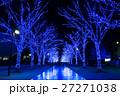 青の洞窟 イルミネーション 渋谷の写真 27271038
