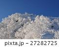 天狗岳 樹氷 冬の写真 27282725