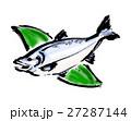 魚 サケ 鮭のイラスト 27287144