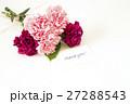 カーネーションの花束 27288543
