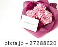 カーネーションの花束 27288620