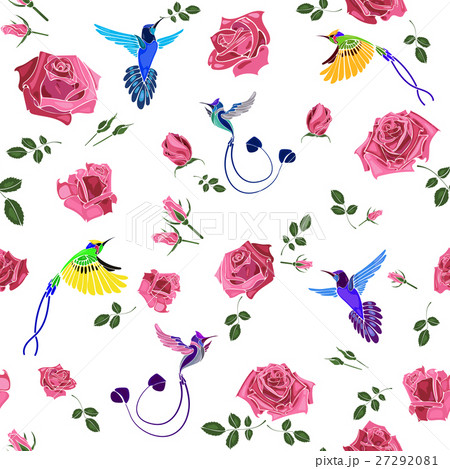 Exotic colibri birds with rose flowers colorful onのイラスト素材 [27292081] - PIXTA