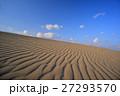 砂丘 鳥取砂丘 風紋の写真 27293570