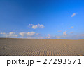 砂丘 鳥取砂丘 風紋の写真 27293571
