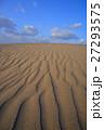 砂丘 鳥取砂丘 風紋の写真 27293575
