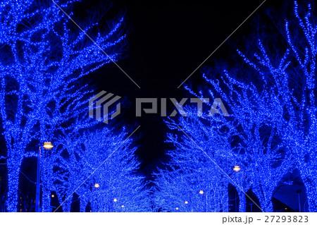 代々木公園 青の洞窟 27293823