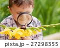 少年 楽しい 幸せの写真 27298355