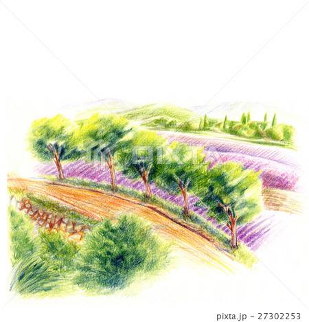 南ヨーロッパの風景・ラベンダー畑 27302253