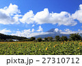 富士山 向日葵 夏の写真 27310712