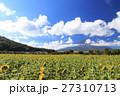 富士山 向日葵 夏の写真 27310713