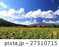 富士山 向日葵 夏の写真 27310715