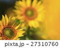 向日葵 27310760