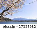 富士山と桜 27328932