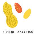 落花生 手描き ピーナッツのイラスト 27331400