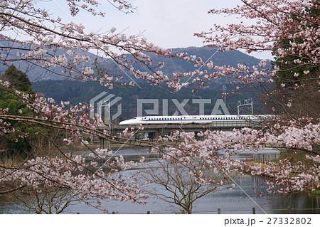 十九女池の桜とN700系 27332802