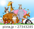 Many types of wild animals in the field 27343285