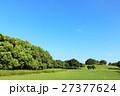 青空と新緑の公園風景 27377624