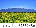 早春の琵琶湖 27380430