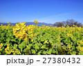 早春の琵琶湖 27380432