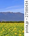 早春の琵琶湖 27380434