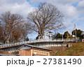 若宮八幡宮に立つケヤキ(茨城県常陸太田市) 27381490