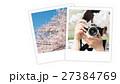 写真 桜 春の写真 27384769