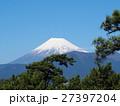松林上の富士(千本松原より) 27397204