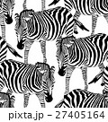 Zebra seamless pattern.  27405164