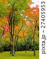 箱根美術館 紅葉 もみじの写真 27405953