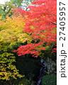 箱根美術館 紅葉 秋の写真 27405957