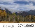 カエデ メープル 楓の写真 27416062