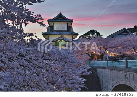 金沢城公園の夜桜 27419355
