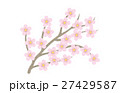 桜 27429587