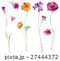 花 ポピー アイリスのイラスト 27444372