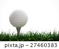 Golf ball  with tee in the grass 27460383