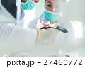 歯科 手 学生の写真 27460772