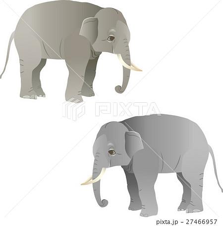 ゾウのイラスト素材 27466957 Pixta